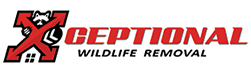 Henderson Wildlife Removal